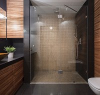 Contemporary Curbless Shower Houston